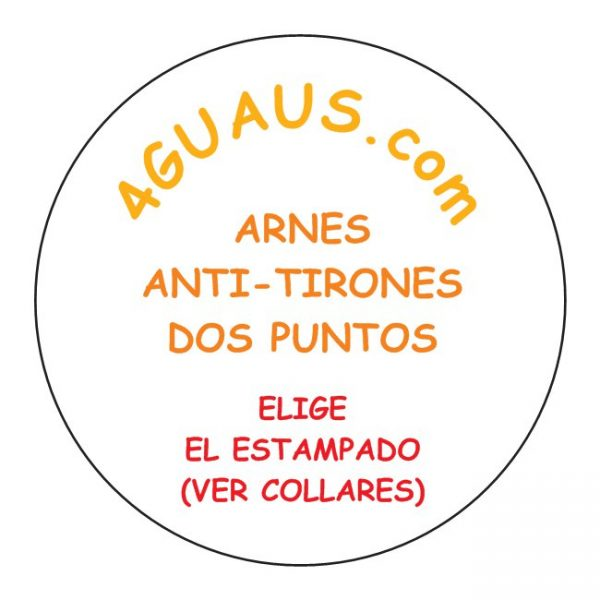 ARNES DOS PUNTOS
