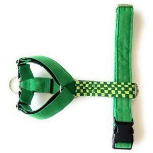 Arnes 2 puntos verde cuadros verde 1-min