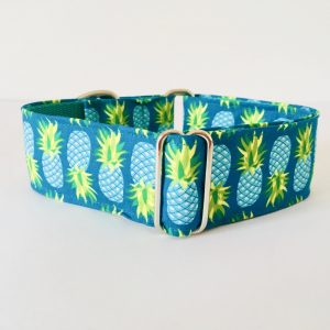 COLLAR PERRO GREEN PINEAPPLE 1