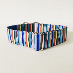 MARTINGALE DOG COLLAR GAZEBO MULTI STRIPE 1