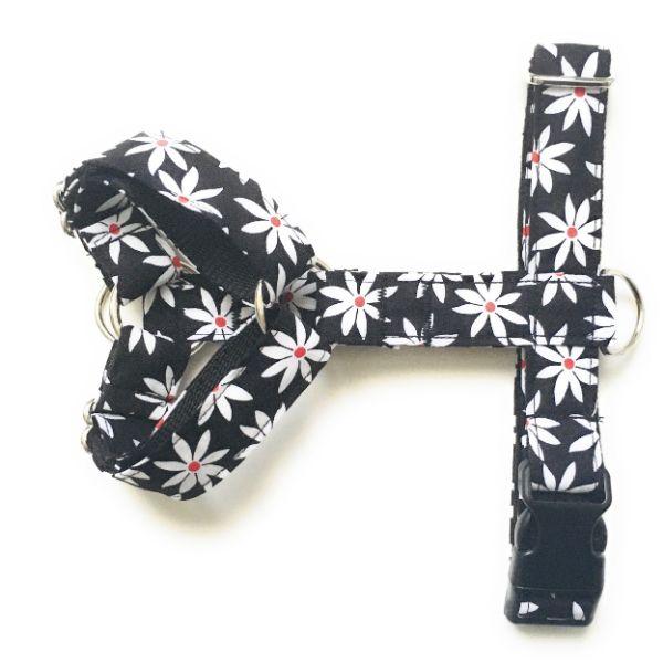 arnes perro 2 puntos margaritas blanco y negro FB-min