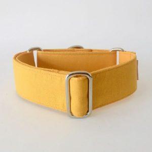 collar perro anaranjado 1-min