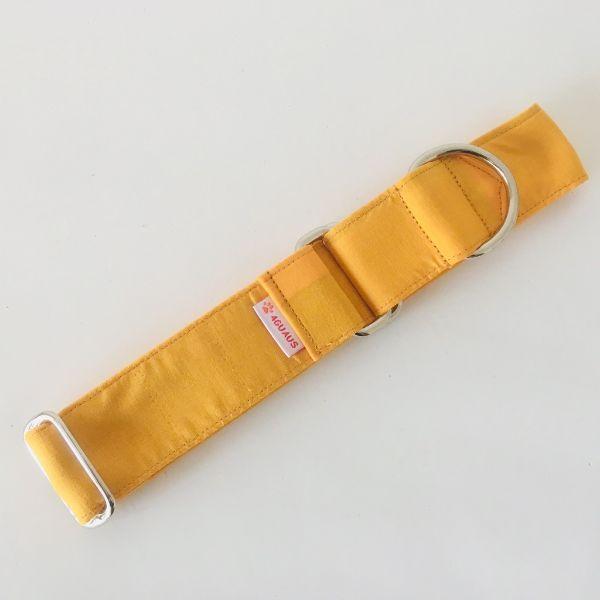 collar perro anaranjado 3-min