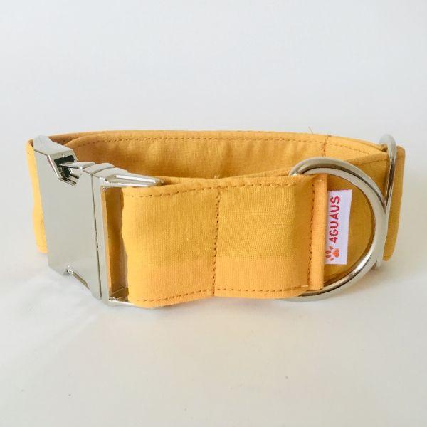 collar perro anaranjado 4-min