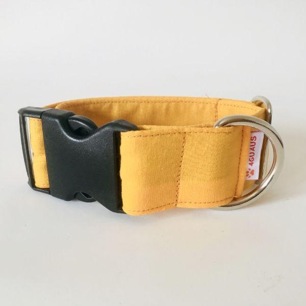 collar perro anaranjado 6-min