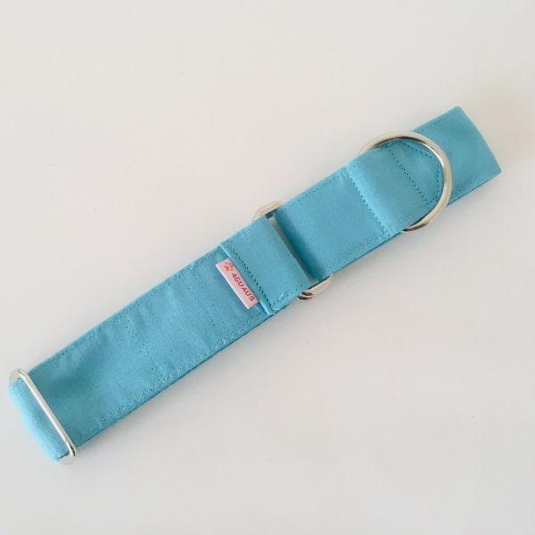 collar perro azul celeste 3-min