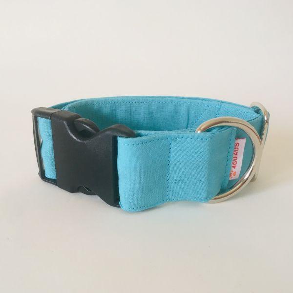 collar perro azul celeste 6-min
