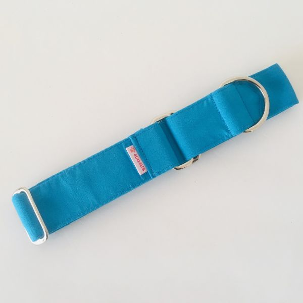collar perro azul medio 3-min