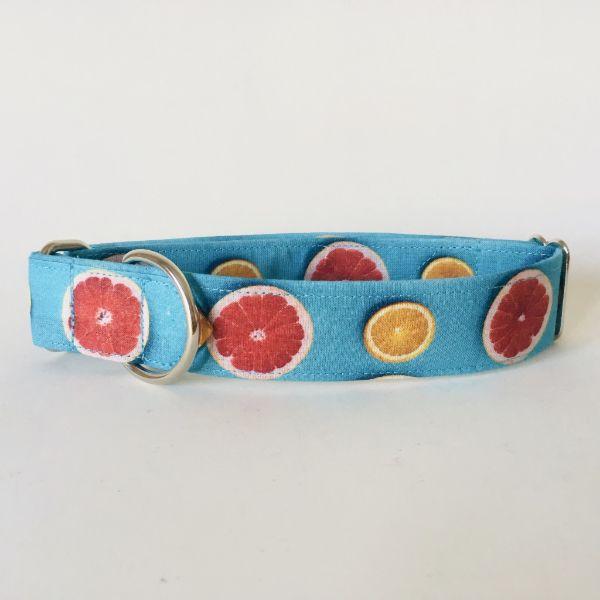 collar perro citricos 3-min
