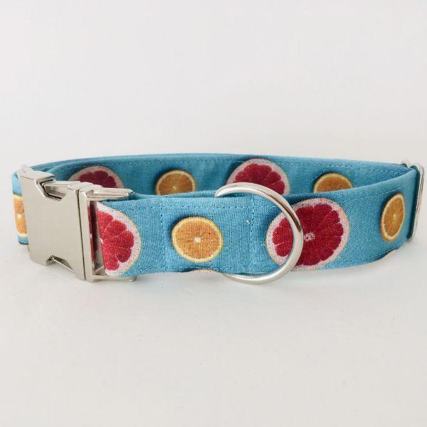 collar perro citricos 4-min