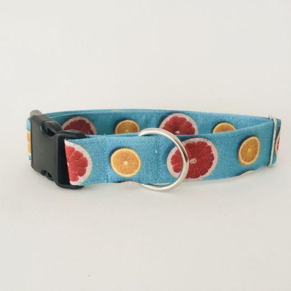 collar perro citricos 7-min