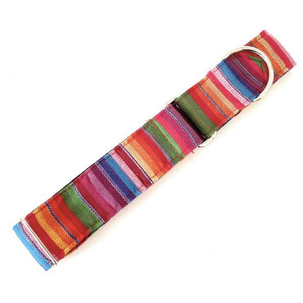 collar perro ethnic arcoiris 2-min