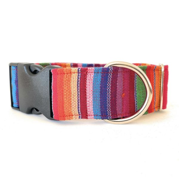 collar perro ethnic arcoiris 4-min