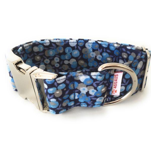 collar perro frutos azul 4-min