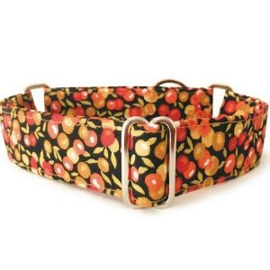collar perro frutos otoño FB-min