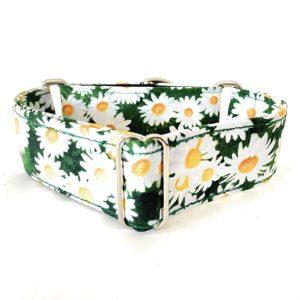 collar perro hierba 1-min
