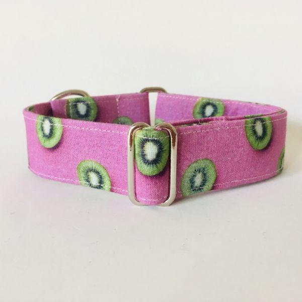 collar perro kiwi 1-min