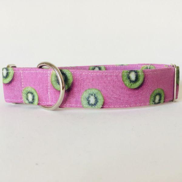 collar perro kiwi 2-min