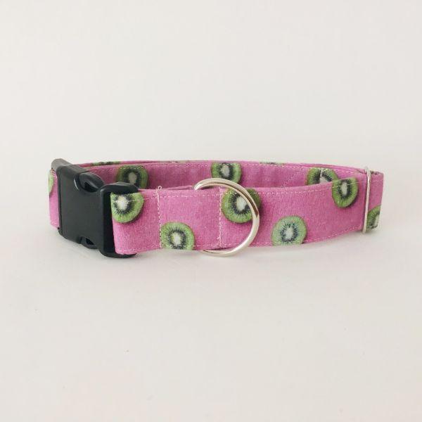 collar perro kiwi 7-min