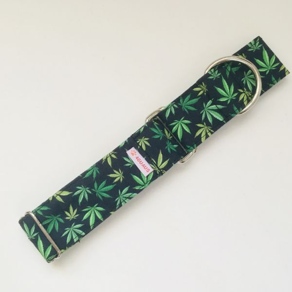 collar perro marihuana 3-min