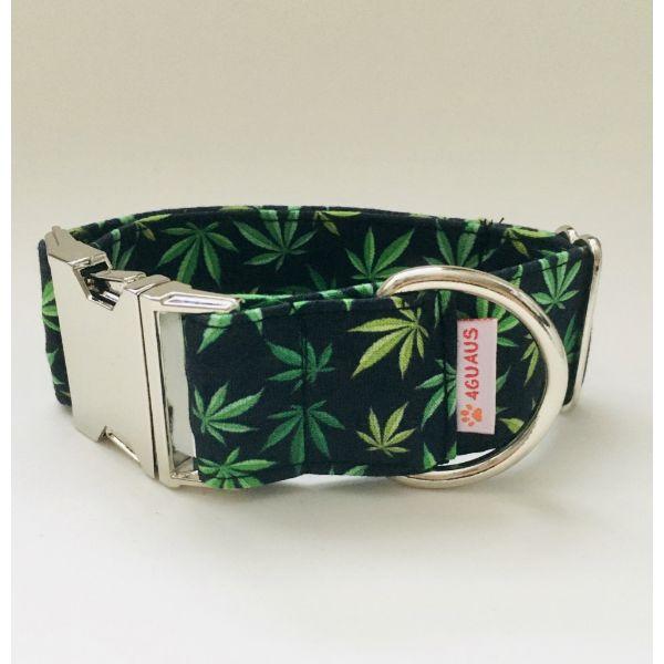 collar perro marihuana 4-min