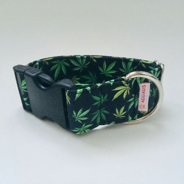 collar perro marihuana 6-min