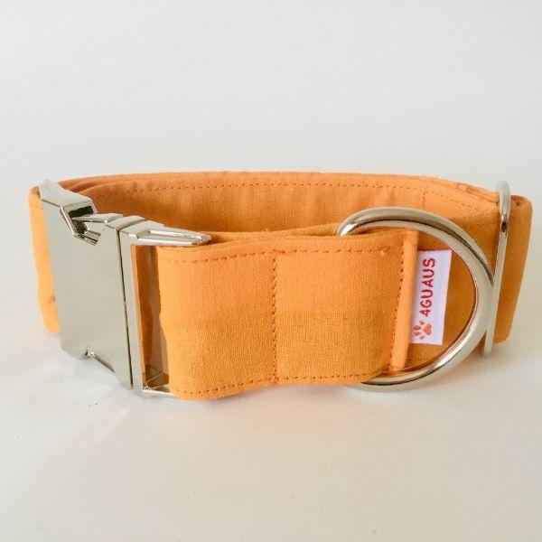 collar perro naranja fluor 4-min