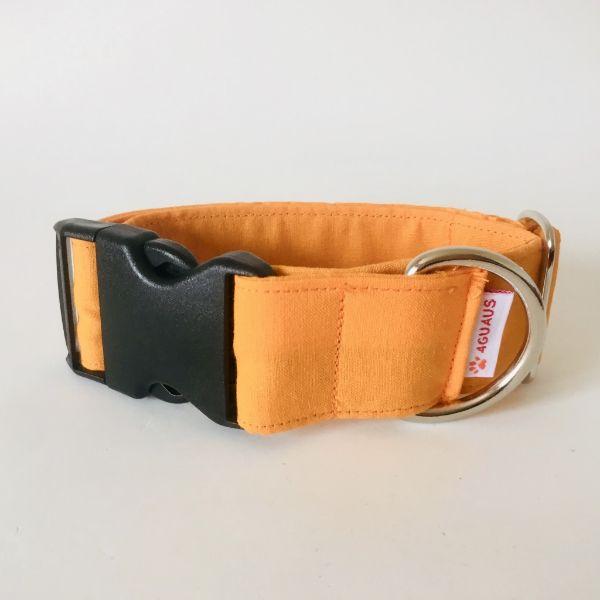 collar perro naranja fluor 6-min