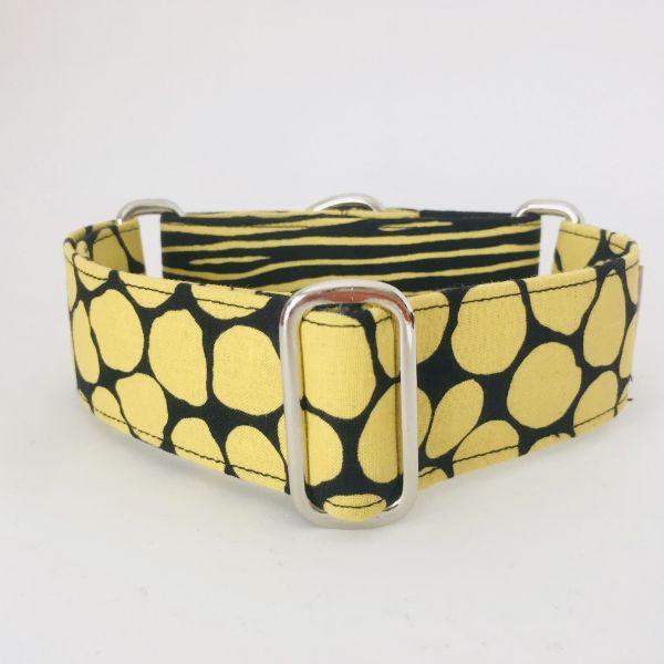 collar perro negro y amarillo 1-min