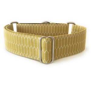collar perro panales mostaza 1-min