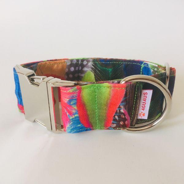 collar perro plumas colores 4-min