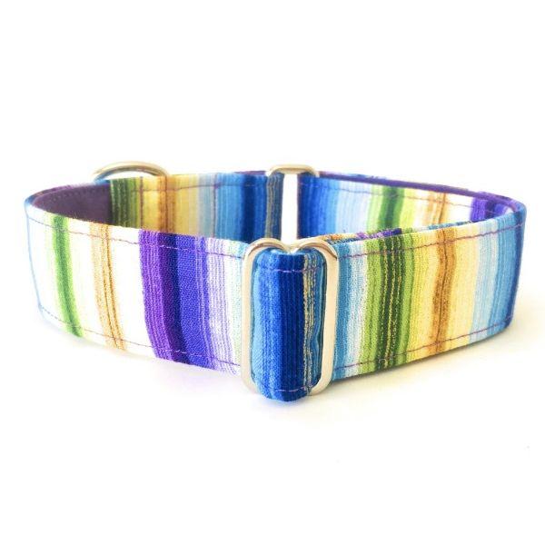 collar perro rayas de verano FB-min