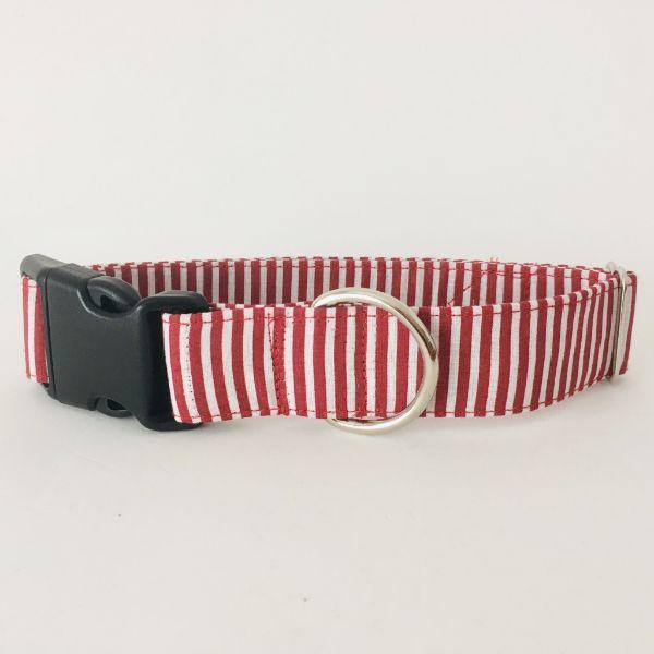 collar perro rayas rojo y blanco 7-min