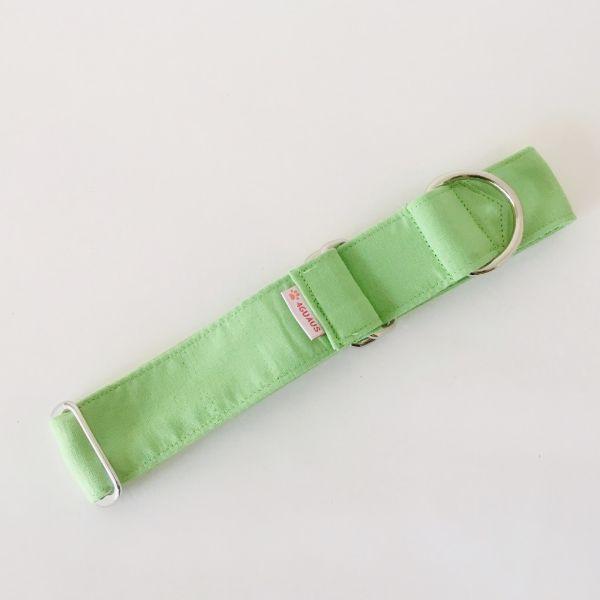 collar perro verde claro 3-min