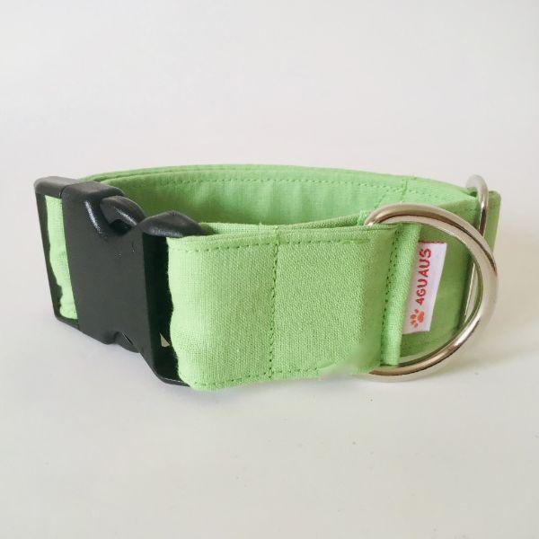 collar perro verde claro 6-min