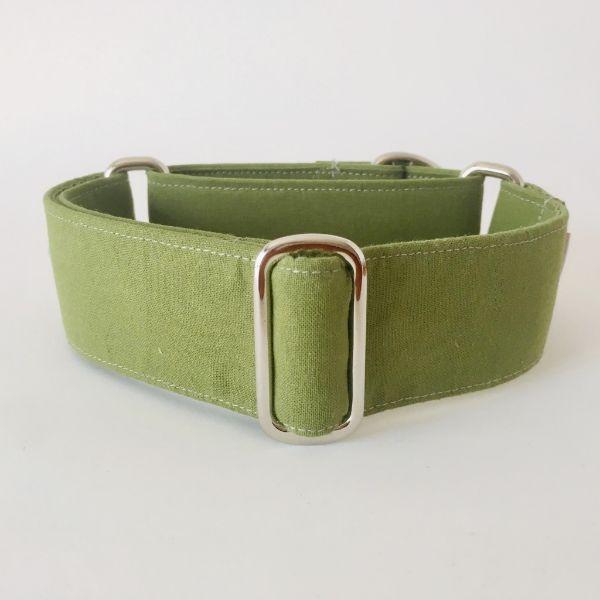 collar perro verde cocodrilo 1-min