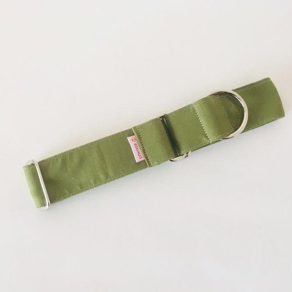 collar perro verde cocodrilo 3-min