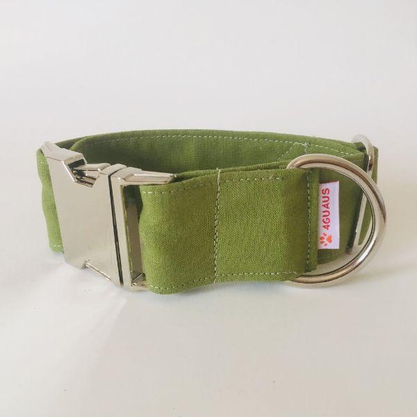 collar perro verde cocodrilo 4-min