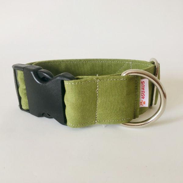 collar perro verde cocodrilo 6-min