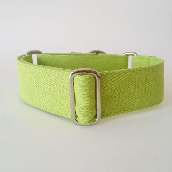 collar perro verde lima 1-min