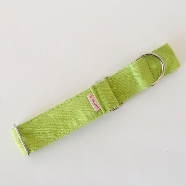 collar perro verde lima 3-min
