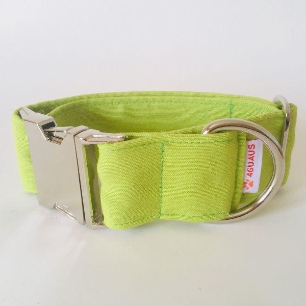collar perro verde lima 4-min