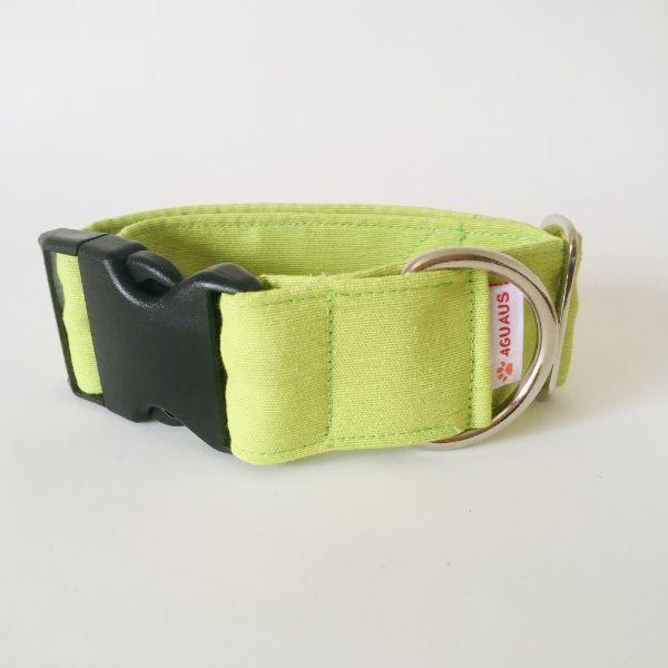 collar perro verde lima 6-min