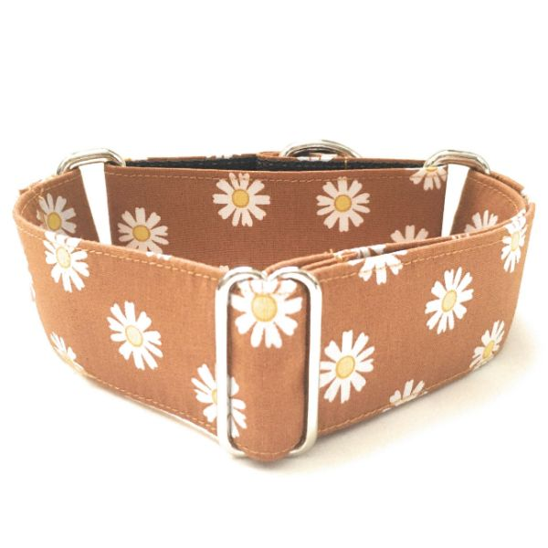 martingale margaritas marron 1 FB-min