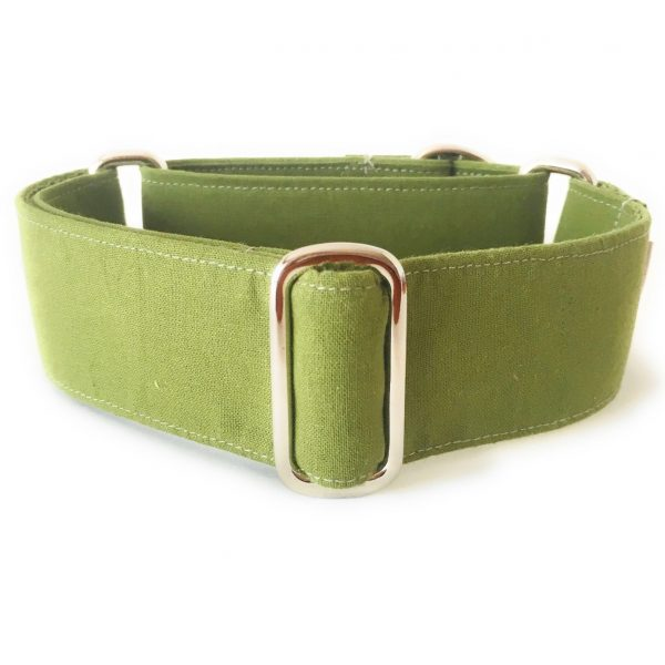 martingale verde cocodrilo 1 FB-min